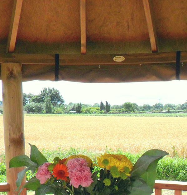 View of fields from inside gazebo